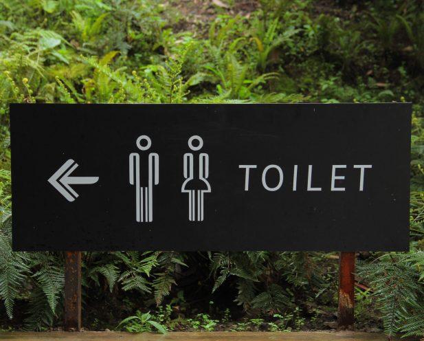 Why Restroom Design Matters